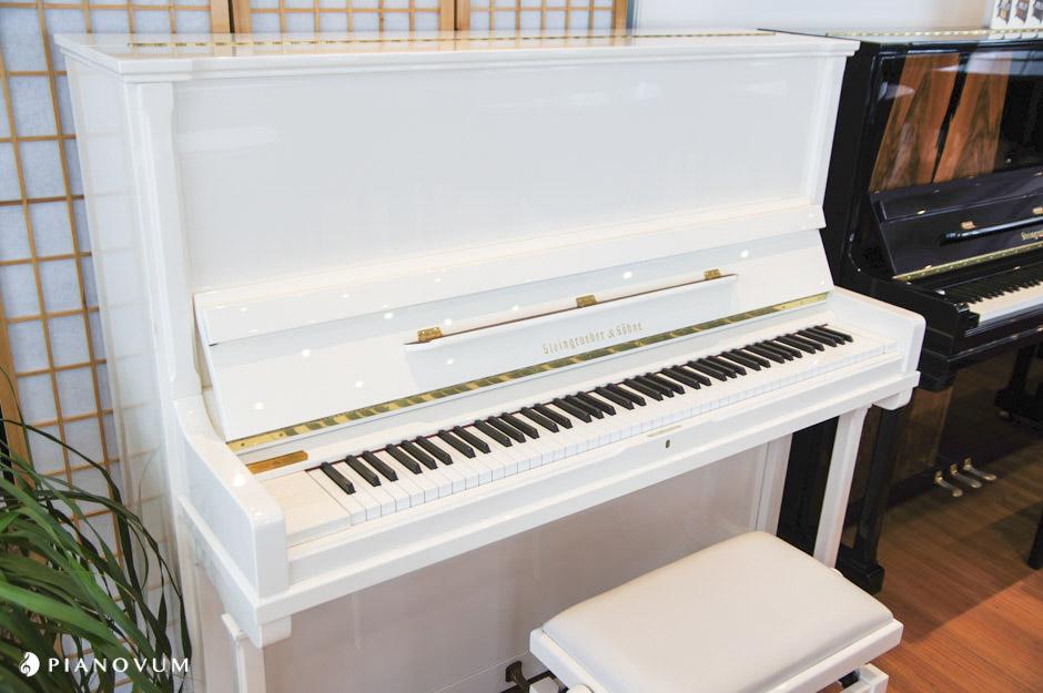 Steingraeber Amp S 246 Hne 138 K Pianovum Innovativer Klavierbau